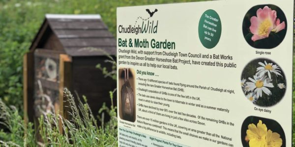 Bat Garden Sign And Bug House