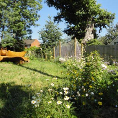 Bat Garden And Bench