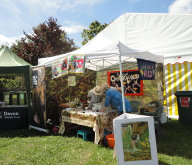 Chudleigh Wild Stand At Chudfest