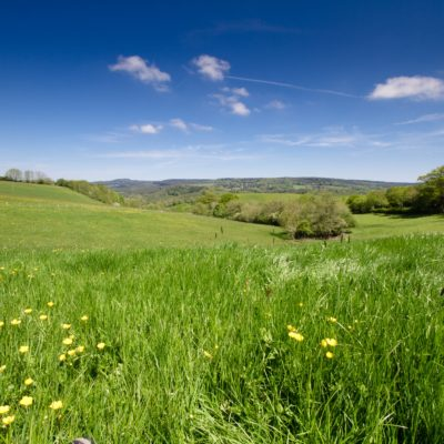 Scenic view of fields from Coombeshead Cottages - Click to open full size image