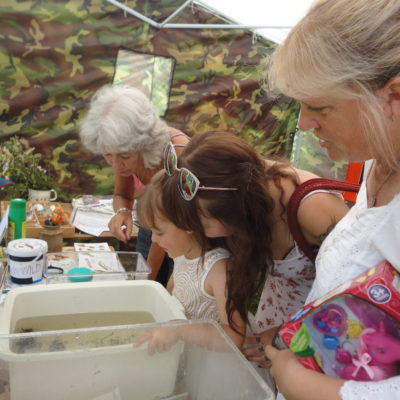 Chudleigh Residents Identifying Pond Life - Click to open full size image